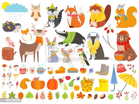 Autumn forest animals. Fall squirrel, funny bear and cute autumnal fox. Fallen leaves, deer bear raccoon animal in autumn clothes, pumpkin mushroom and cups. Cartoon isolated vector icons set