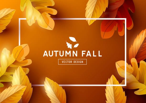 autumn frame background top view - autumn stock illustrations