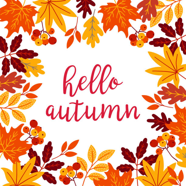 Autumn Greeting Card Autumn greeting card with rowan berry, maple and oak leaves. Perfect for seasonal greeting cards. fall background stock illustrations
