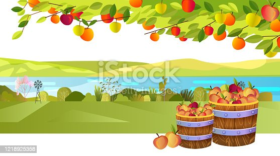 Horizontal rural landscape in flat style with hills,river, field. Illustration for organic local production advertisement