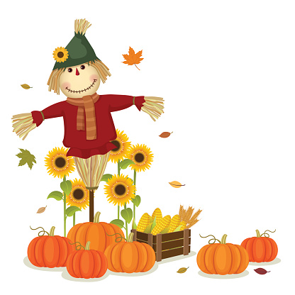 Autumn Harvesting With Cute Scarecrow And Pumpkins Stock ...