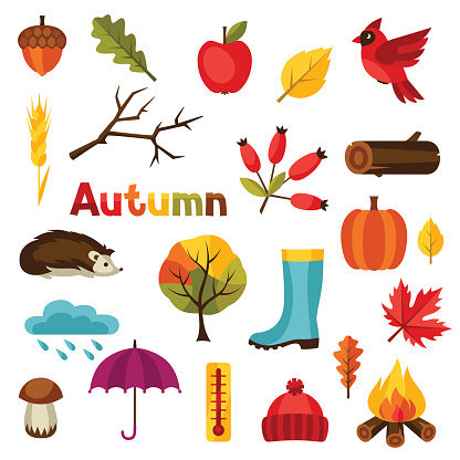 Autumn icon and objects set for design