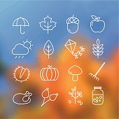 Collection of autumn icons - atumn symbols and activities. Thin lines style. This file is saved in EPS10 format.