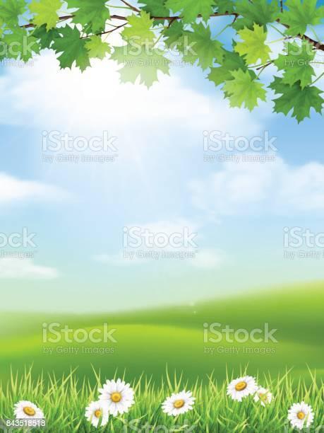 Autumn landscape grass hill maple branch vector id843518518?b=1&k=6&m=843518518&s=612x612&h=6luyrzr4i x bjdiaspjmc xsxh7rbegag5t0m215ti=