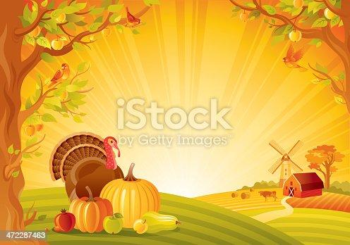 Autumn lanscape with turkey and vegetebles