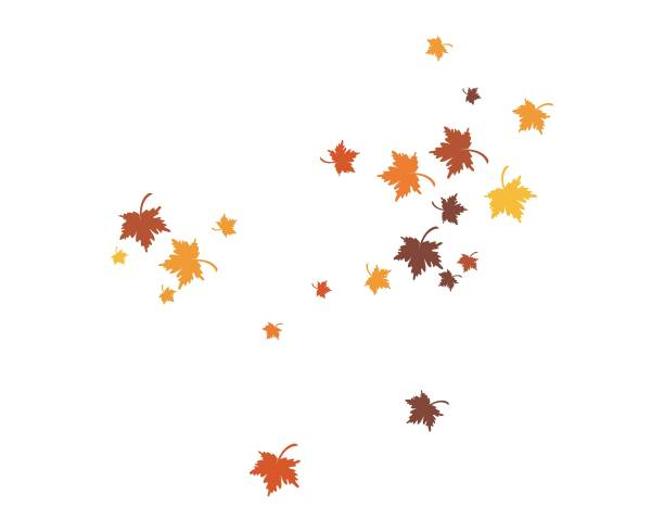 illustrazioni stock, clip art, cartoni animati e icone di tendenza di autumn leaf background template - foglie