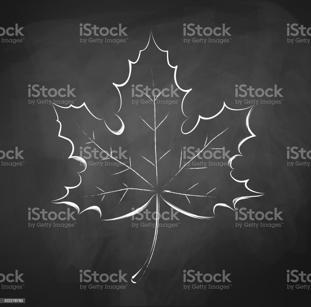 Autumn leaf. Chalkboard drawing. vector art illustration