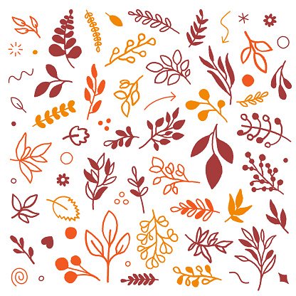 Autumn Leaf Color Seamless Vector Pattern