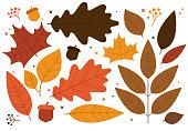 Fallen autumn leaf elements.