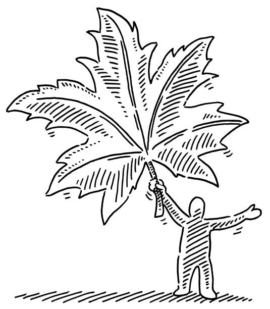 Autumn Leaf Human Figure Drawing Hand-drawn vector drawing of a Human Figure holding an Autumn Leaf. Black-and-White sketch on a transparent background (.eps-file). Included files are EPS (v10) and Hi-Res JPG. environment stock illustrations