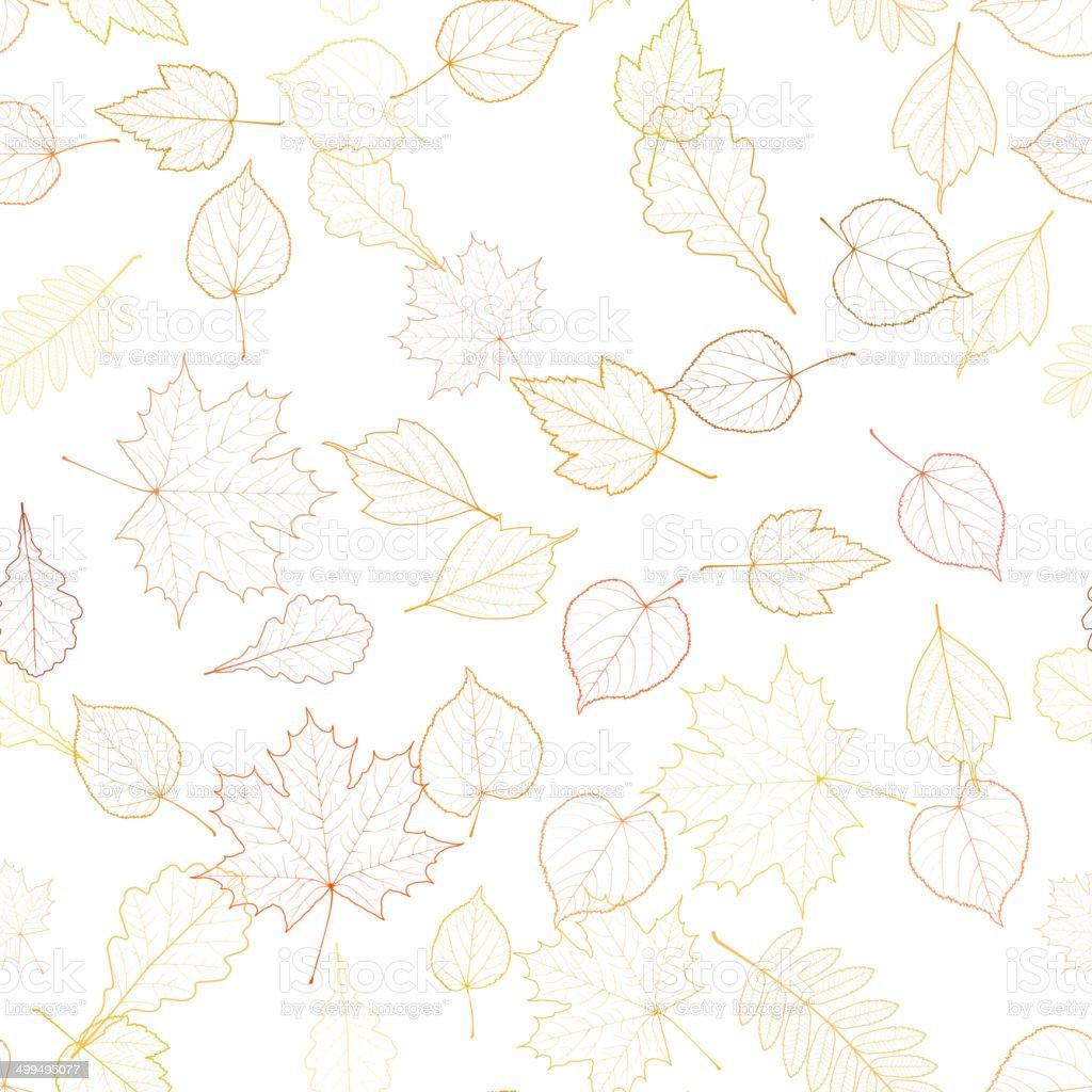 Autumn leaf skeletons template. vector art illustration