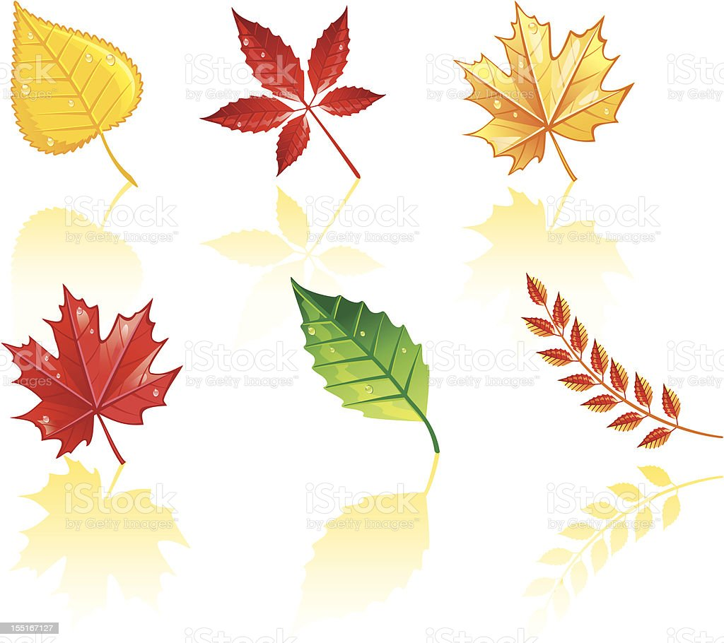 Autumn leafs royalty-free stock vector art