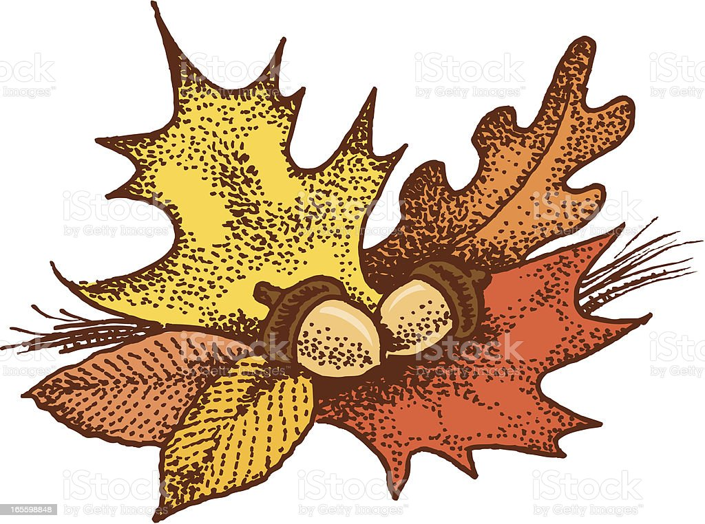 Autumn Leaves and Acorns - Fall royalty-free autumn leaves and acorns fall stock vector art & more images of acorn