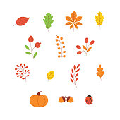 Autumn leaves and berries set isolated on white background - abstract flat vector illustration set of bright colorful tree foliage for fall seasonal design. Various floral autumnal elements.