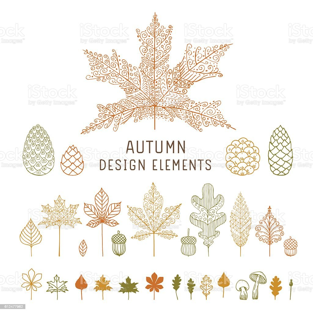Autumn leaves and cones Editable flat vector design elements on layers. Acorn stock vector