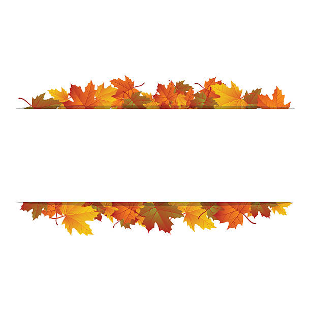 autumn leaves around blank rectangle. vector banner - fall stock illustrations
