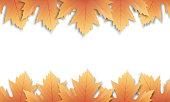 Autumn leaves background. Fall maple leaves frame, overlay, banner.