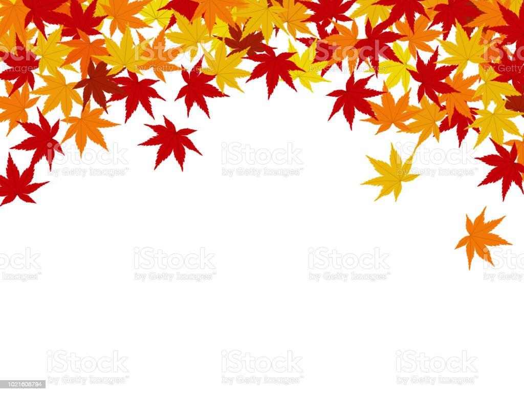 紅葉背景素材 - かえでの葉のベクターアート素材や画像を多数ご用意