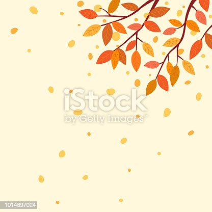 Autumn,nature,tree,falling,outdoor,scene, leaves,design,wallpaper,template, background