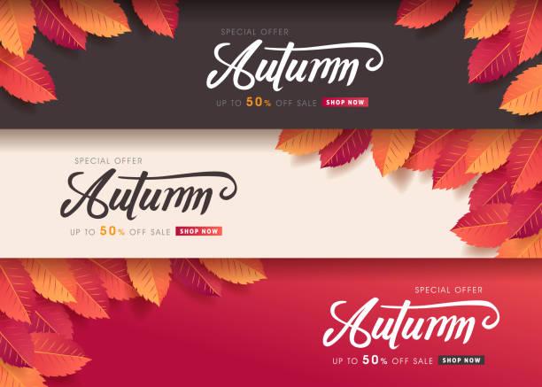 Autumn leaves background. vector illustration.Promotion sale banner of autumn season. vector art illustration