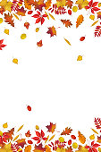 Autumn leaves border isolated on white background
