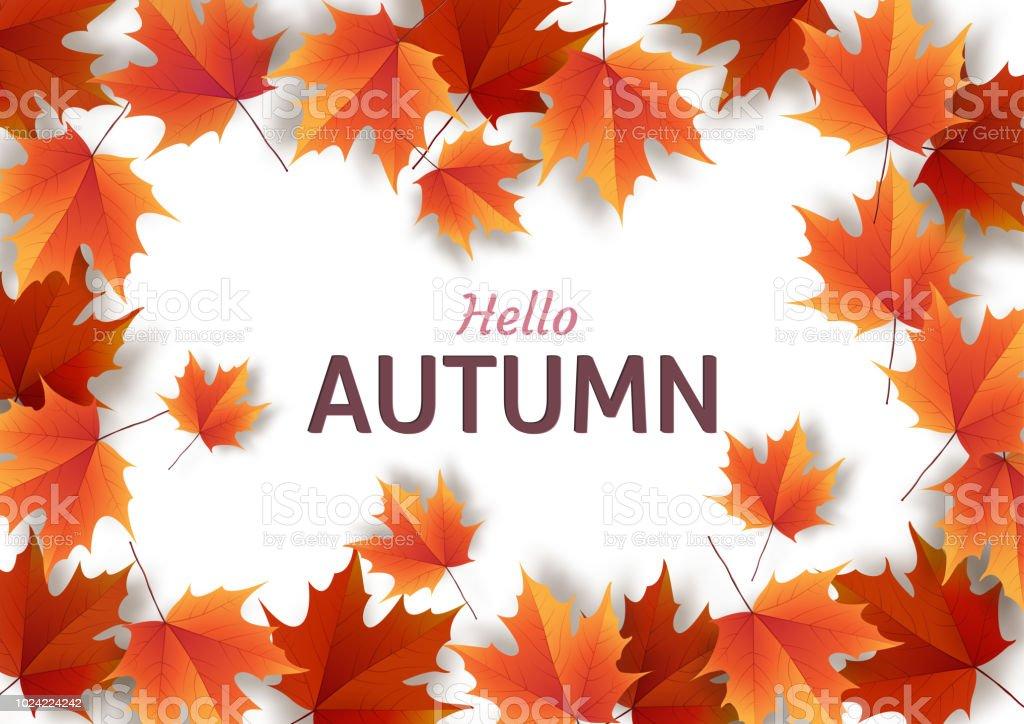 autumn leaves bright colourful autumn oak leaves template for stock