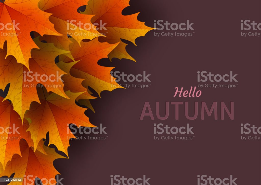 autumn leaves bright colourful autumn oak leaves template for stock