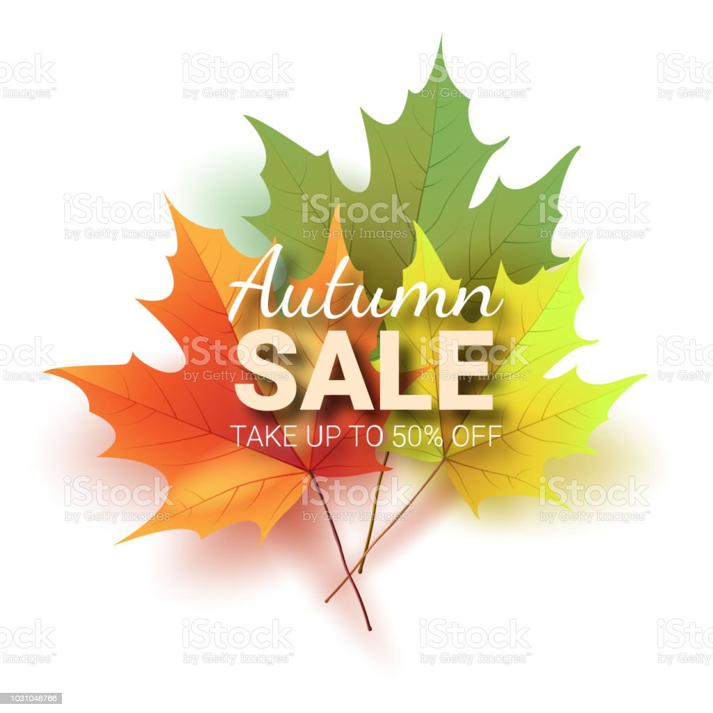 Autumn leaves bright colourful autumn oak leaves template for stock autumn leaves bright colourful autumn oak leaves template for royalty free autumn leaves maxwellsz