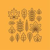 Autumn leaves line icons set.