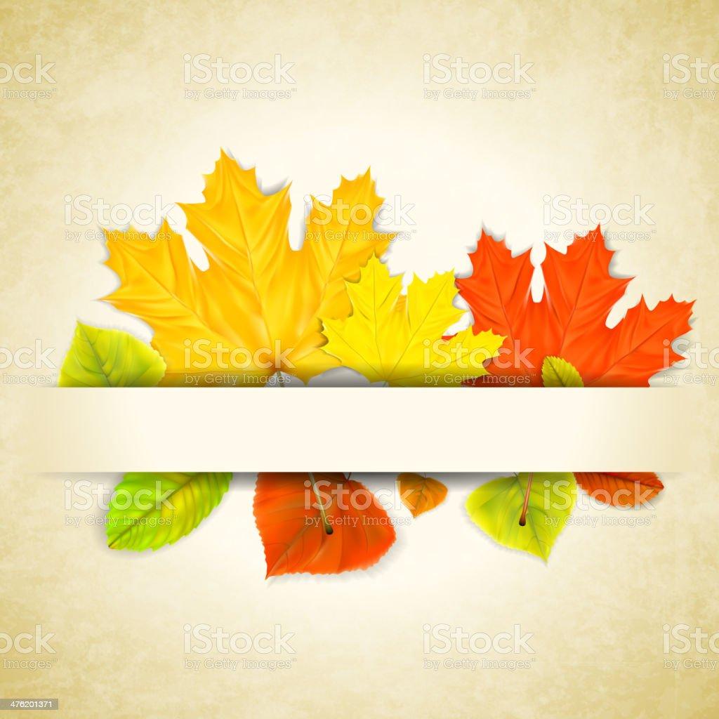 Herbst Blätter auf Zerkratzt Papier Hintergrund Lizenzfreies herbst blätter auf zerkratzt papier hintergrund stock vektor art und mehr bilder von abstrakt