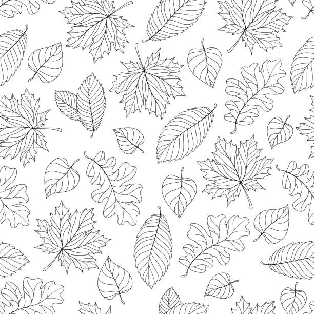 autumn leaves pattern - 葉狀花紋 幅插畫檔、美工圖案、卡通及圖標