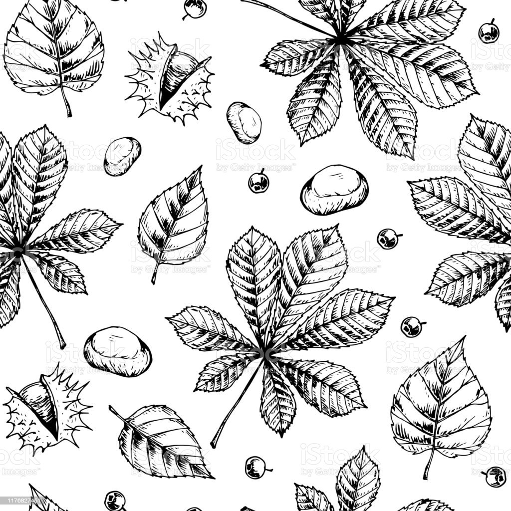 Autumn Leaves Seamless Pattern Isolated On White Background Hand ...
