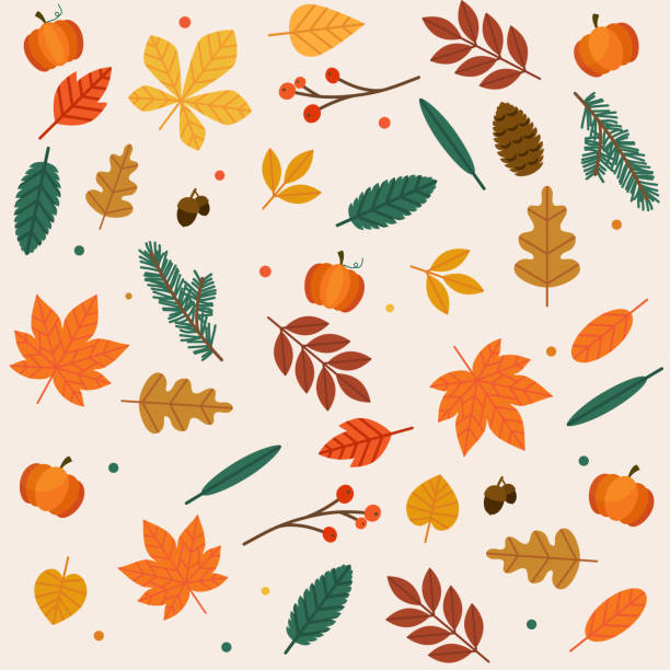 autumn leaves set. flat design modern vector illustration concept. - autumn stock illustrations