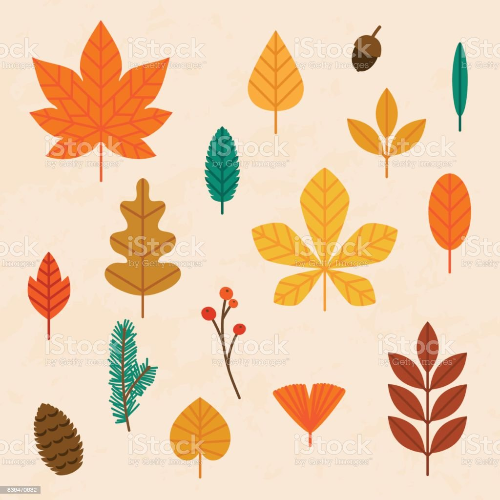 Autumn leaves set. Flat design modern vector illustration concept. - illustrazione arte vettoriale