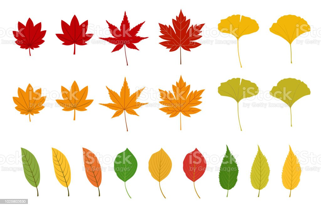 Falling Leaves Clip Art
