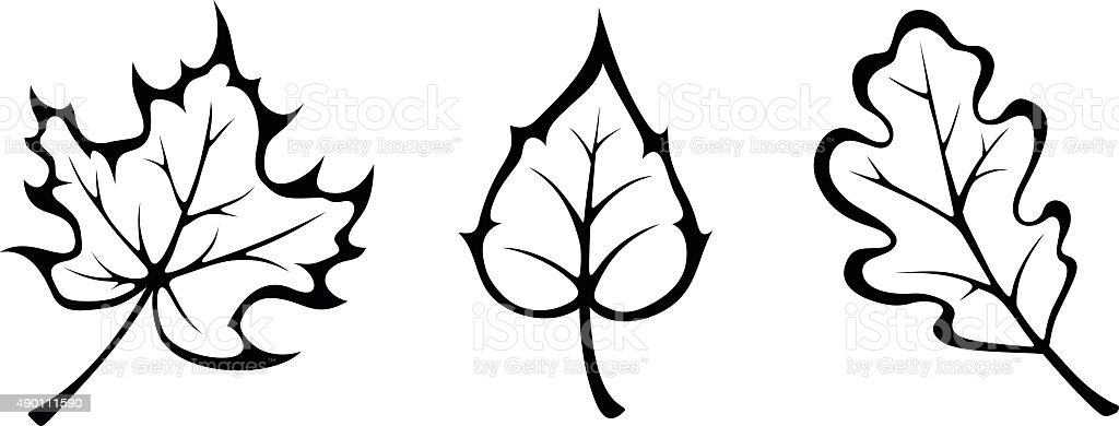 autumn leaves vector black contours stock vector art more images rh istockphoto com maple leaf black and white clipart fall leaf clip art black and white
