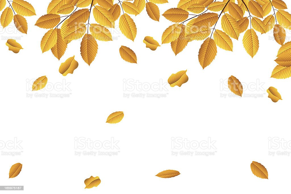 Autumn Leaves vector art illustration