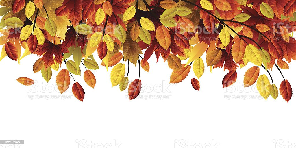 Autumn Leaves royalty-free stock vector art