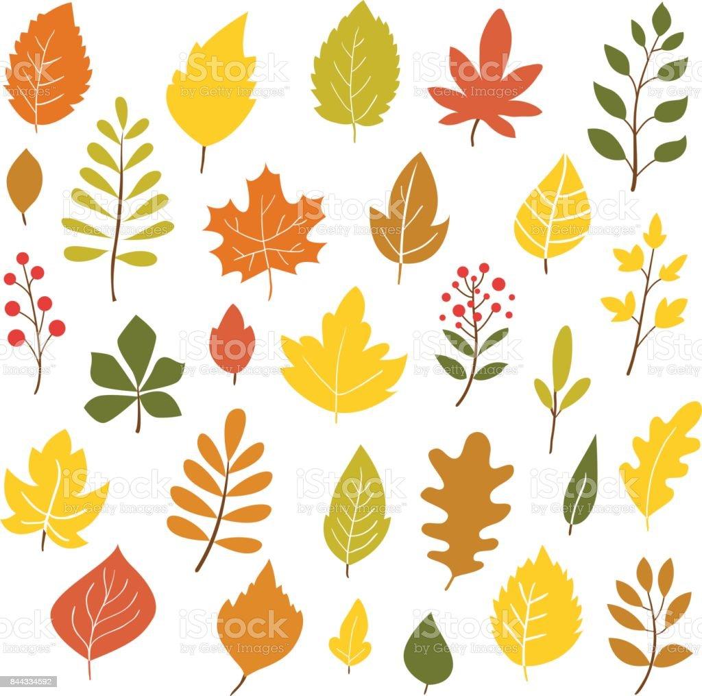 Autumn leaves. vector art illustration