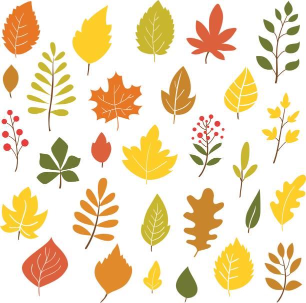 ilustraciones, imágenes clip art, dibujos animados e iconos de stock de hojas otoñales. - despedida