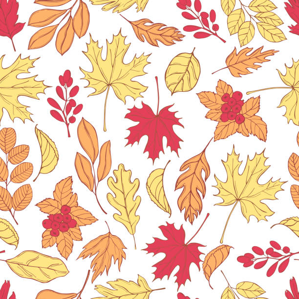 stockillustraties, clipart, cartoons en iconen met herfst bladeren. vector patroon - vaatplanten