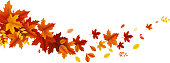 autumn leaves floating wave