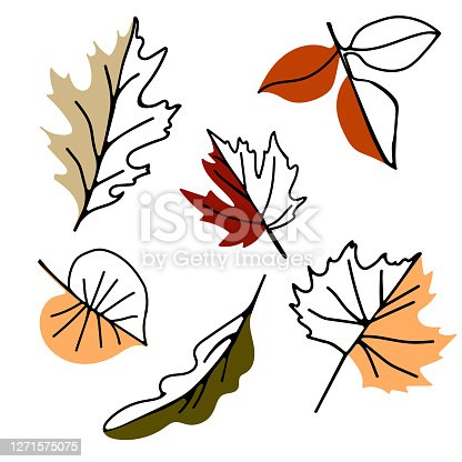 Hand drawn vector autumn leaves set on a white background. Design for poster, textiles, web and sale