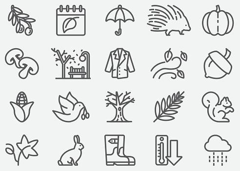 Autumn Line Icons