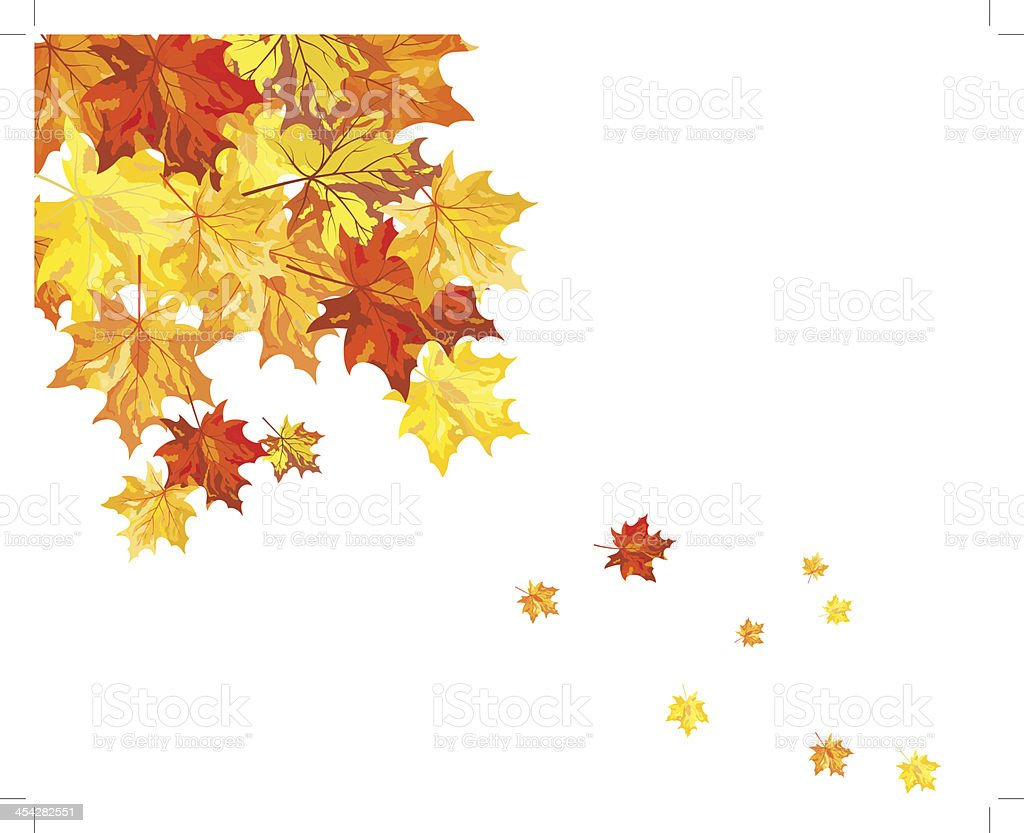 Autumn maple leaves royalty-free stock vector art