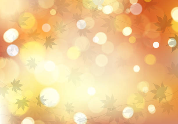 Autumn maple leaves with beautiful sunlight bokeh background. Vector illustration. Vector EPS 10 format. fall background stock illustrations