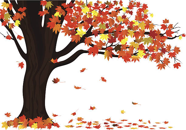 Royalty Free Autumn Tree Clip Art, Vector Images ...