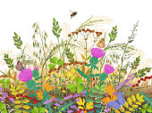 Floral composition made with autumn meadow plants and insects. Fading grass, colorful wild flowers, bumblebee and butterflies on white background.  Vector flat illustration.