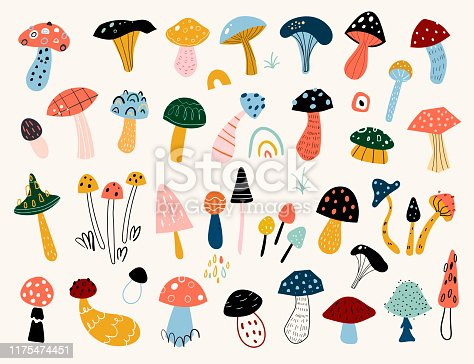 Autumn mood. Hand drawn big vector set of various types of mushrooms. Colored trendy illustration. Flat design.