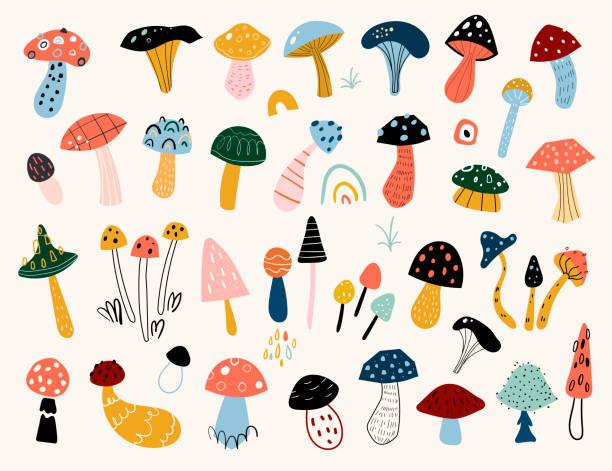 가을 분위기. 손으로 그린 버섯의 다양한 유형의 큰 벡터 세트. 컬러 트렌디 한 일러스트. - 버섯 stock illustrations